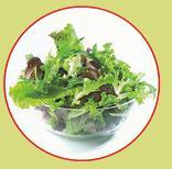 Les salades - Comment conserver la salade ...